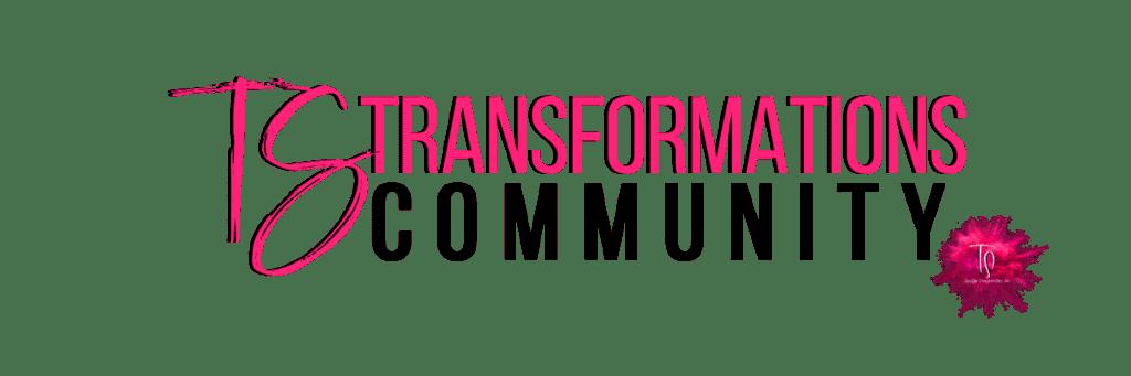 TS-Transformations copy